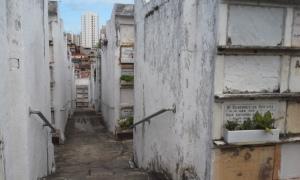 Cemetery Maze