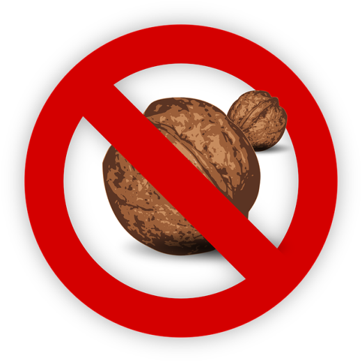 tree-nut-995054_640.png