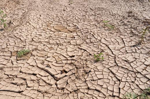 drought-19478_1280.jpg